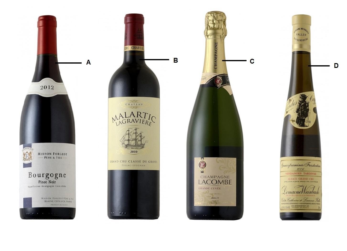 Fotos garrafas de vinhos 35