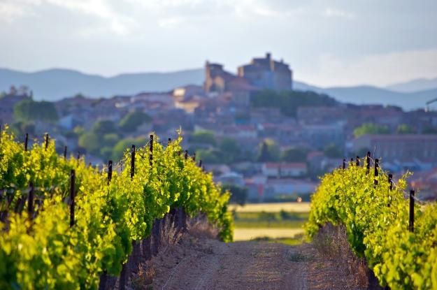 Vista da cidade medieval de Carcassonne, no Languedoc-Rossillon (França).