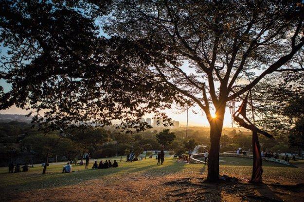 praca-por-do-sol-sao-paulo-piquenique-primavera