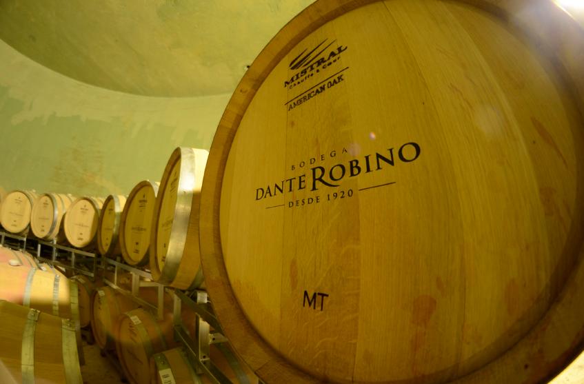 dante-robino-vinicola-barril