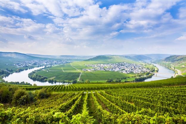vinho-branco-mosel-alemanha