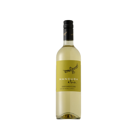 Vinho Branco Mancura Etnia Sauvignon Blanc 2016 750 mL